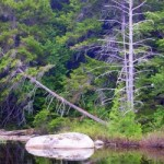 See photos of Mount Katahdin online - official website.