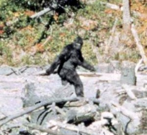 Pomoola or Injun Devil - Maine's Sasquatch.