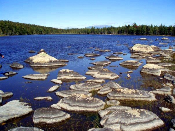Rocks sticking out of low water and Mt Katahdin in the back.